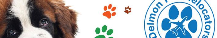 Int. Pets Relocators