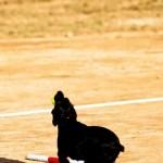 Training-Ver-(5)
